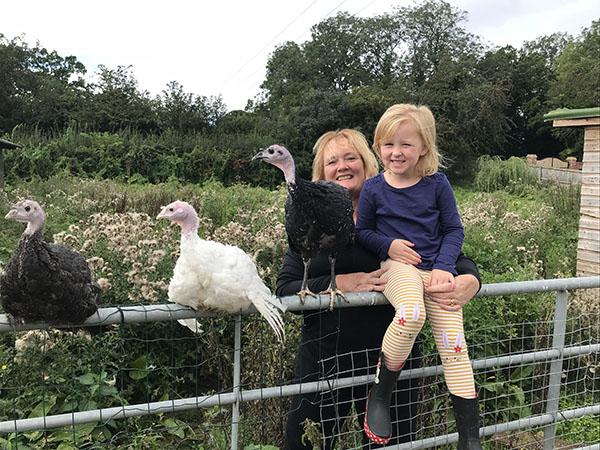 On our turkey farm